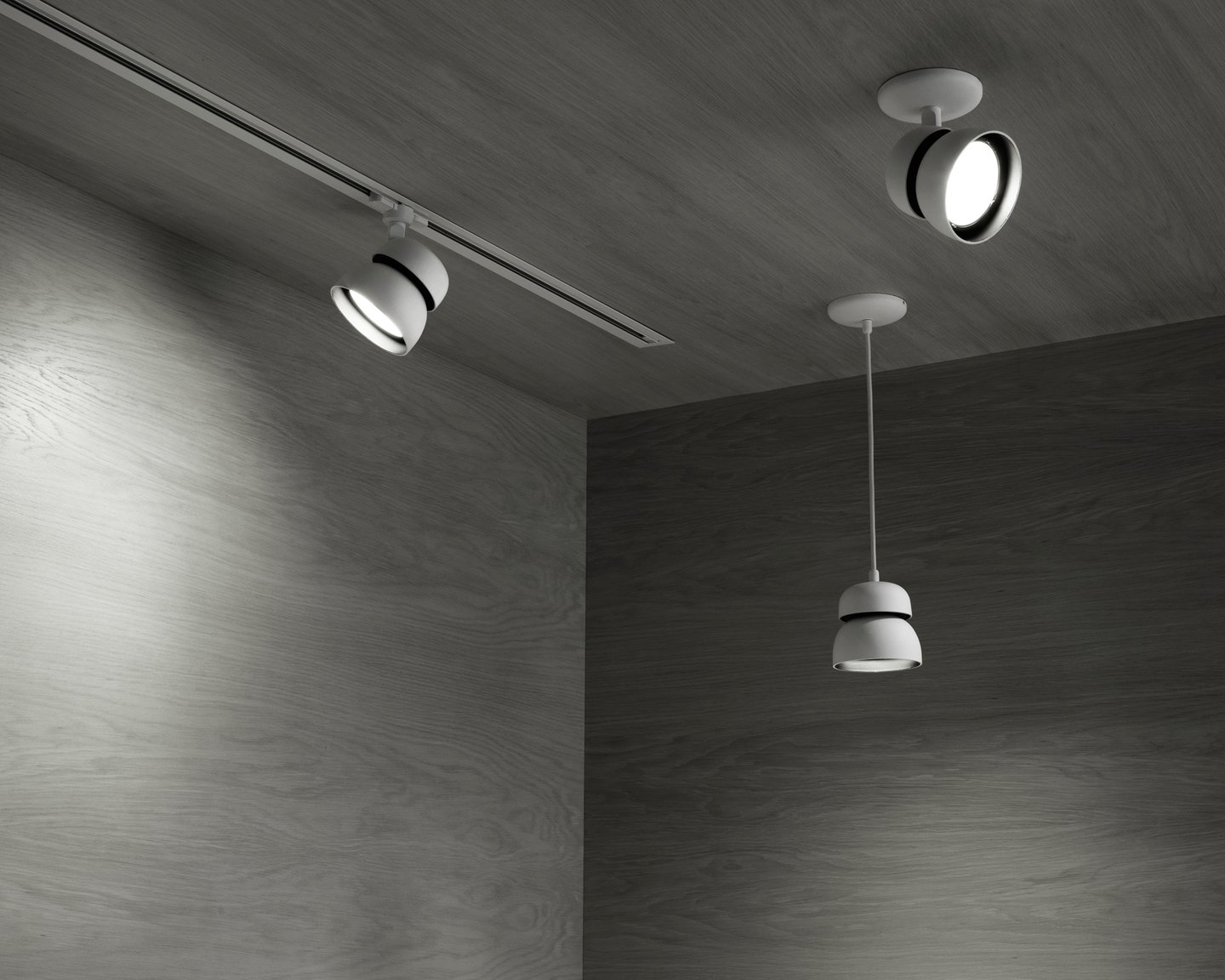 Image: uploads/2017_03/Resident-Echo-Light-by-Flynn-Talbot-2.jpg